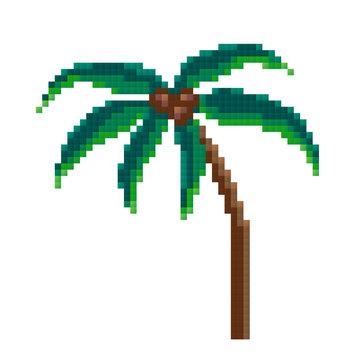pixel palm, pixel art. vector illustration