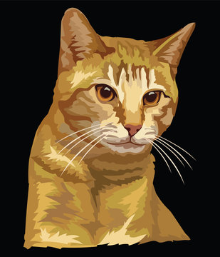 Colorful vector cat 2