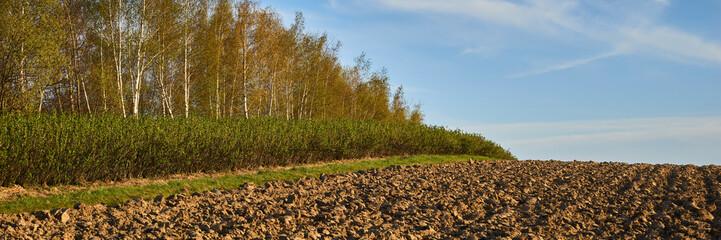 Panoramy pól uprawnych na wiosnę po orce