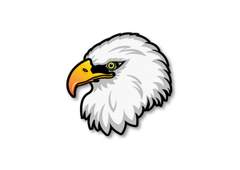 american eagle isolated on white