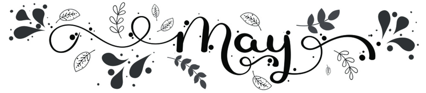 Hello May. MAY month vector with ornaments, flowers and leaves. Decoration floral. Illustration month may