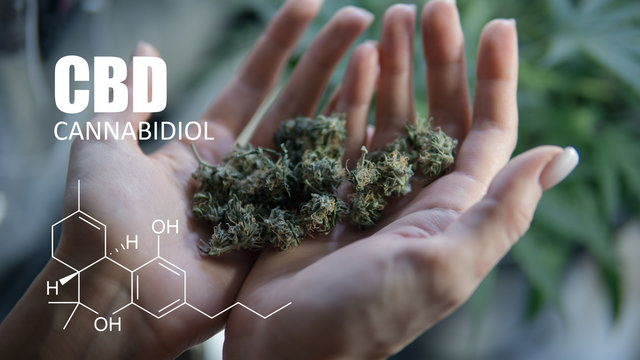 Digital Composite Image Of Cropped Hands Holding Marijuana Joint By Molecular Structure