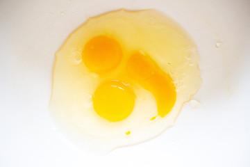Canvas Prints Egg FRA - DAILY LIFE IN BRETAGNE
