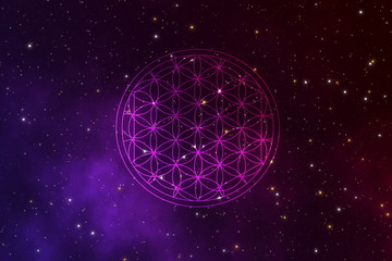 Abstact flower of life sacred sign in the universe