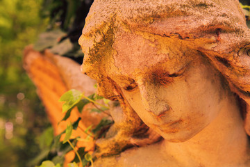 Fotomurales - Beautiful sad angel. Dramatic facial expression. Vintage styled image of ancient statue.