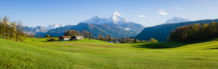 Spoed Fotobehang Bomen Beautiful rural mountain scenery in the Alps in spring