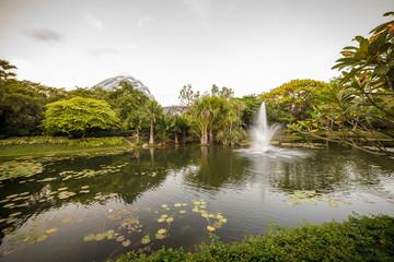 Printed kitchen splashbacks Beige Teich und Springbrunnen in den Marina Bay Gardens in Singapur