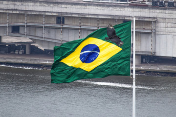 Photo sur Aluminium Amérique du Sud Brazil's flag with a flying black vulture in front of it. Symbol of corruption. The colorful and vibrant yellow and green flag stained by shadow politics.