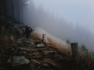 Rear View Of People Hiking On Mountain