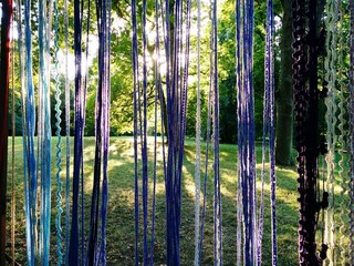 Printed roller blinds Bamboo Ropes Hanging Against Trees In Forest