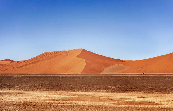 Sand Dune in the Namibian Desert near Sossusvlei in Namib-Naukluft National Park, Namibia.