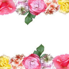 Fototapete - Beautiful floral pattern of roses and pelargoniums. Isolated