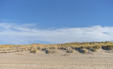 Sand dune with beach grass near Kampen on the island of Sylt Fototapete