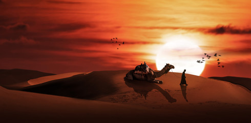 Photo sur Toile Rouge mauve a silhouette men with camel in desert sunset scenery.
