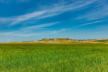Fotoväggar - Getreidefelder in der Wüste Bardenas Reales, Navarra