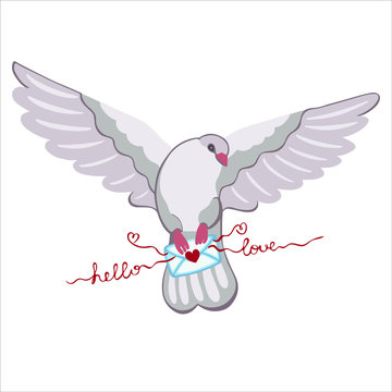 A flying dove with spread wings carries a romantic letter, an envelope, a love message in its paws. Vector hand drawn illustration.