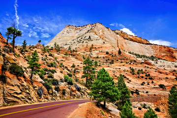Fototapete - Scenic drive through the red peaks Zion National Park, Utah, USA
