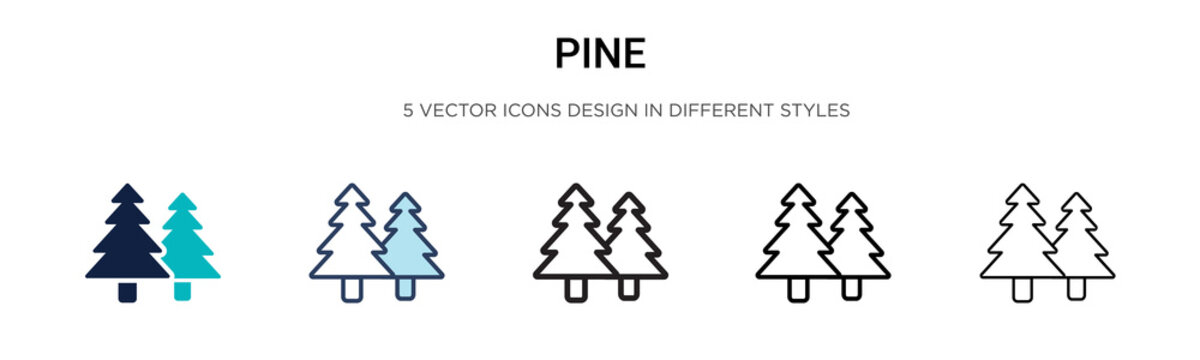 Pine icon in filled, thin line, outline and stroke style. Vector illustration of two colored and black pine vector icons designs can be used for mobile, ui, web