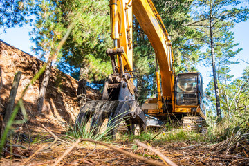 Canvas Prints Honey Yellow excavator in the grass under trees - low angle view