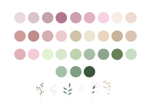 neutrals color palette and abstract flowers, procreate  swatches, workpiece icons