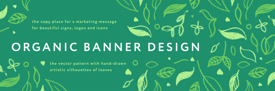 Vector herbal banner with drawings of herbs. Natural cosmetic label. Leaf silhouette for eco store, healthy food. Botanical background for bio pattern, herbal medicine with organic illustrations.