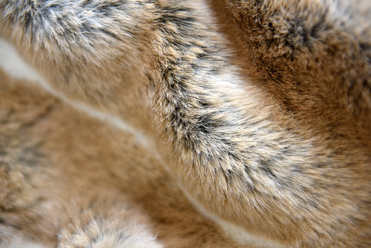 Faux fur fabric in full frame