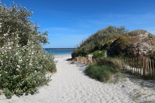 Entrée d'une plage déserte de sable blanc, la Grève Blanche, sur l'île de Batz en Bretagne (France)