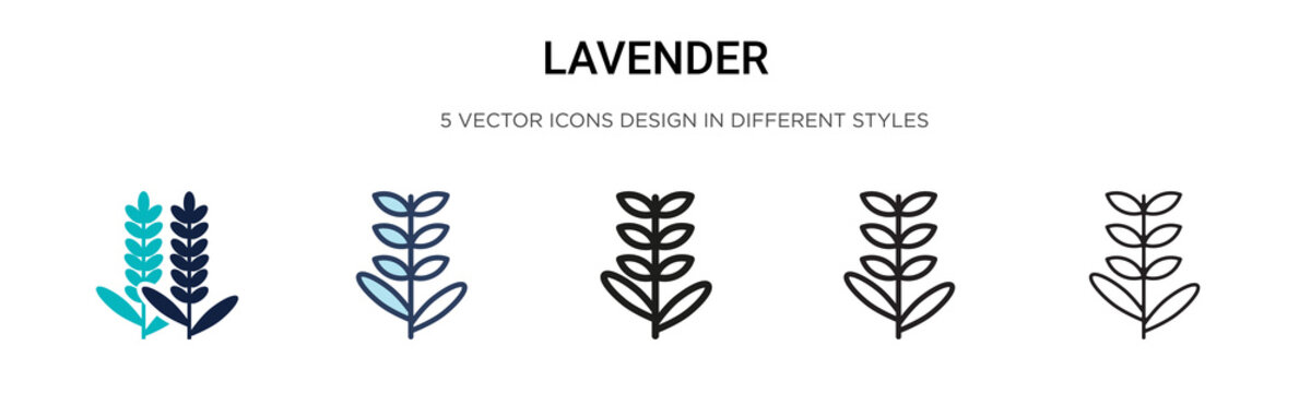 Lavender icon in filled, thin line, outline and stroke style. Vector illustration of two colored and black lavender vector icons designs can be used for mobile, ui, web