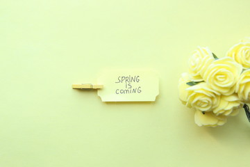 Spring Is Coming, inscription on the plate