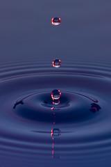 Fototapeta Gotas de agua color azul con morado suspendidas en el aire y  formando ondas en la superficie liquida, que representan tranquilidad o serenidad