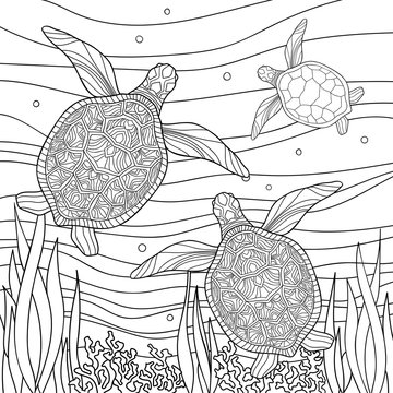 Family of turtles with small patterns in underwater world with corals and algae on white isolated background. Sea hand drawn illustration. For kids and adults coloring book pages.