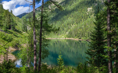 Wall Mural - Picturesque forest lake, summer mountain landscape, travel and leisure