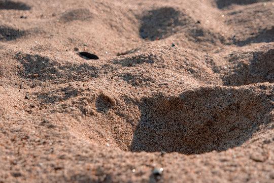 말리부 비치의 모래사장,  Sandy beach