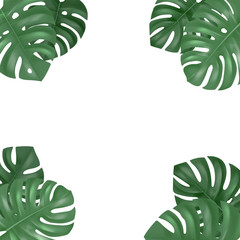 Wall Mural - Vector decorative frame with realistic monstera leaves on white background