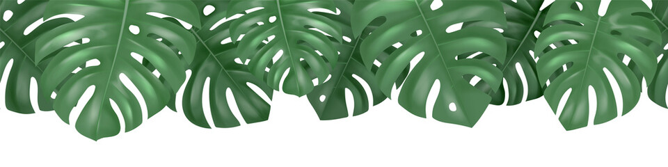 Wall Mural - Vector decorative seamless pattern with realistic green monstera leaves on white background
