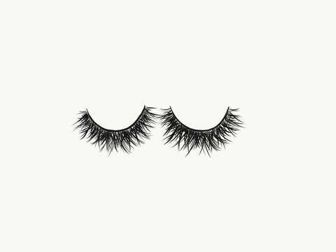 A hand drawn image of a full and fluffy set of black false strip lashes against a white background