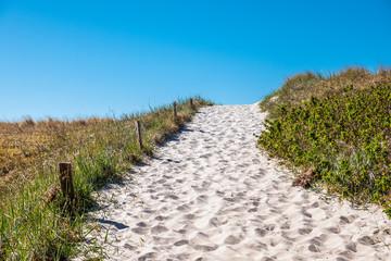 Fototapete - Strandzugang an der Ostseeküste auf dem Fischland-Darß