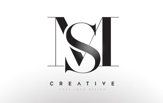 MS sm letter design logo logotype icon concept with serif font and classic elegant style look vector