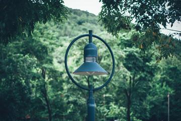 Street Light Against Trees Fotomurales