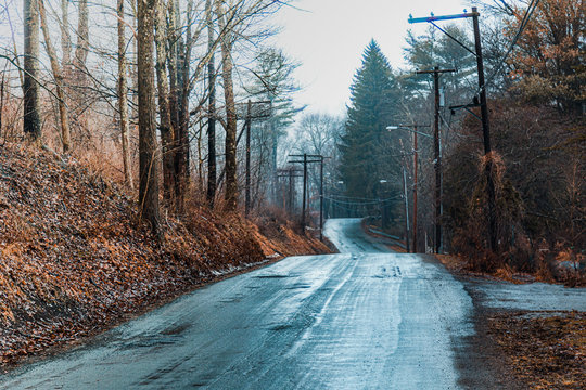 Empty Road Amidst Trees During Winter