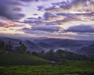 Foto auf AluDibond Lavendel Scenic View Of Landscape Against Dramatic Sky