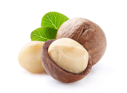 Macadamia nuts with leaves in closeup