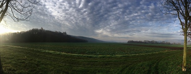 Scenic View Of Agricultural Field Against Sky Fototapete
