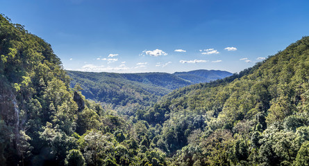 View from Pearling Brook lookout over the green forest trees