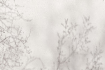 Wall Mural - Gray shadows tree branches on a white wall.