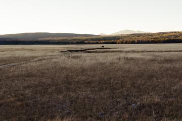 Foto auf Gartenposter Schokobraun Countryside Landscape Against Clear Sky