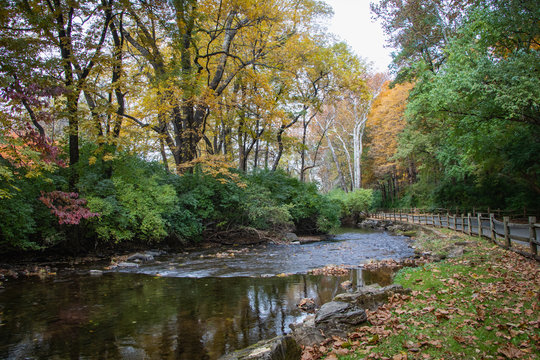 Wyomissing Creek surrounded by fall foliage near Reading, PA