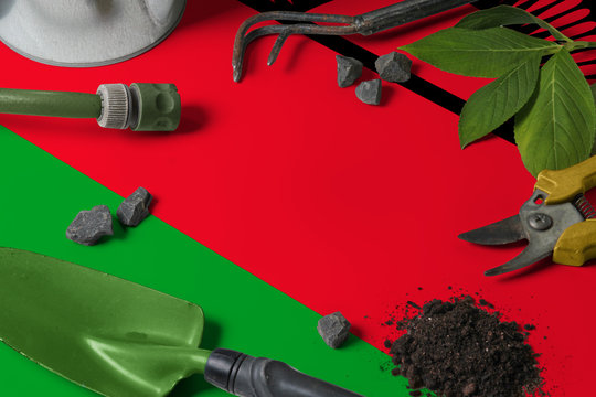 Malawi flag with gardening tools background on table. Spring in the garden concept with free copy space.