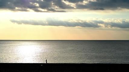 Wall Mural - 熊野灘の海岸と釣り人