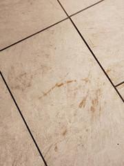 Filthy Dirty Tile Floor